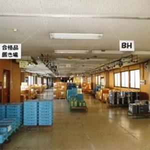 着工前 内部 1階 工場・倉庫